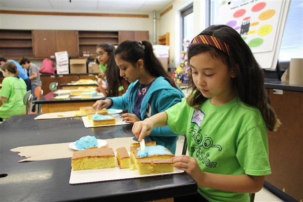 Cake Carving and Decorating