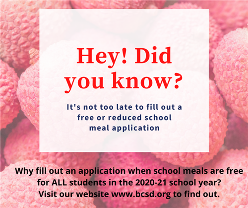 Fill out a Free or Reduced School Meal Application